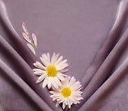 Tela de satén púrpura con las margaritas Imagenes de archivo