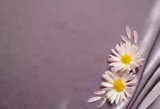 Tela de seda com flores Fotografia de Stock