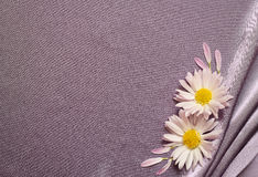Tela de seda con las flores Fotografía de archivo
