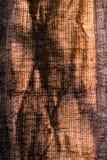 Tela del cáñamo Imagen de archivo