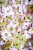 Tela del vintage de las flores para el fondo Fotografía de archivo libre de regalías