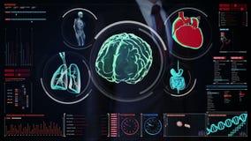 Tela digital tocante do homem de negócios, cérebro de varredura, coração, pulmões, órgãos internos no painel da indicação digital ilustração royalty free
