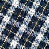 Tela escocesa Imagens de Stock