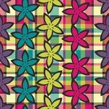 Tela escocesa de la flor del resorte Foto de archivo libre de regalías