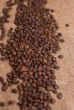 Tela marrom de serapilheira dos feijões de café natural Fotos de Stock