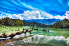 Telaga Warna lake Royalty Free Stock Images