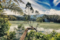 Telaga Warna lake Royalty Free Stock Photos