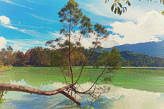 Telaga Warna lake Stock Photos