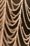 Telaraña Imagen de archivo libre de regalías