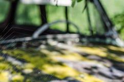 telaraña en coche Imagenes de archivo