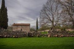 telavi的教堂与树和柏 库存照片
