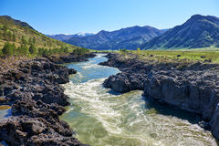 Teldykpen rapids on Altai river Katun near Oroktoi, Russia Royalty Free Stock Photography