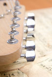 Telecaster Head Stock Photography