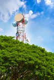 Telecommunication tower peaking above tree top Royalty Free Stock Photography