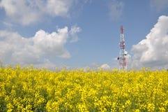 Telecommunication tower on a rape field Royalty Free Stock Photo