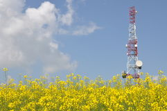 Telecommunication tower on a rape field Stock Image