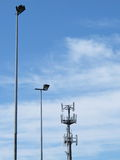 Telecommunications cell phone tower and light poles Stock Image