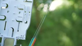 Technicians are installing optic fiber with cable ties. Telecommunications engineer working with optical coupling fiber royalty free stock images