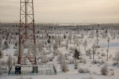 Telecommunications tower and satellite dish telecom network on evening sky with sundown and winter north forest.  Stock Images