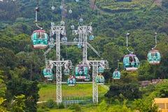 Teleféricos sobre árboles tropicales en Hong Kong Imagen de archivo
