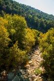 Teleferica della grotta di Jeita Fotografie Stock Libere da Diritti