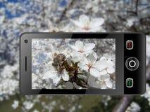 telefon komórkowy Obrazy Stock