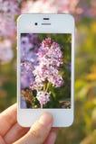 Telefon komórkowy, kamera Obrazy Royalty Free