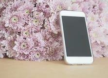 Telefon komórkowy z menchiami kwitnie tło Obrazy Stock