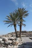 Telefon Megiddo, Israel Stockbilder