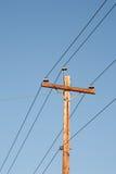 Telefon Pole Arkivbild