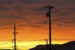 Telefon Pole och trådar på solnedgången Royaltyfri Foto