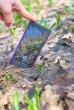 Telefon Smartphone auf dem Gras unter den Blumen, blaue Schneegl?ckchen technologien stockbild