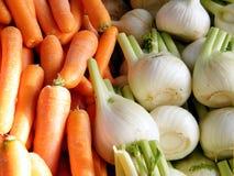 Telefone Aviv Carrots e Fenchel 2011 Fotografia de Stock