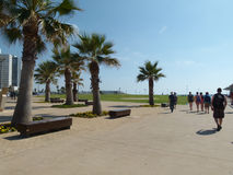 Telefone Aviv Landscape Foto de Stock Royalty Free