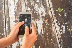 Telefone celular do uso da mulher na cafetaria Fotografia de Stock