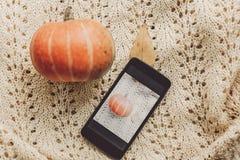 Telefone com a foto da abóbora e da folha com a abóbora bonito em s morno Fotografia de Stock