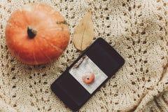 Telefone com a foto da abóbora e da folha com a abóbora bonito em s morno Imagens de Stock