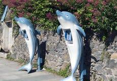 Telefone do golfinho imagens de stock royalty free