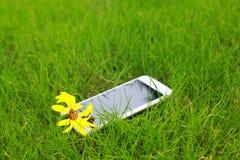 Telefone e flor na grama verde, close up disparado na grama verde imagem de stock royalty free