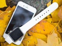 Telefone moderno e um relógio Imagens de Stock