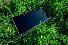 Telefone na grama foto de stock