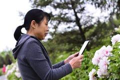 Telefoni cellulari di uso delle donne per prendere le immagini dei fiori Fotografie Stock Libere da Diritti