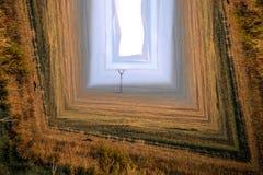 Telefoniczny wierza w abstracted polu obrazy stock