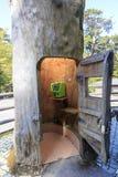 Telefonu budka w drzewnym bagażniku w Yakushima wyspie zdjęcia royalty free