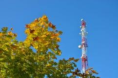 Telefonu komórkowego radia tv komunikacyjny wierza, maszt, komórki mikrofali anteny i nadajnik przeciw drzewom i niebieskiemu nie obrazy stock
