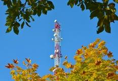 Telefonu komórkowego radia tv komunikacyjny wierza, maszt, komórki mikrofali anteny i nadajnik przeciw drzewom i niebieskiemu nie Obraz Royalty Free