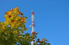 Telefonu komórkowego radia tv komunikacyjny wierza, maszt, komórki mikrofali anteny i nadajnik przeciw drzewom i niebieskiemu nie fotografia royalty free