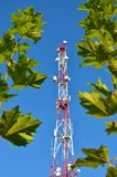 Telefonu komórkowego radia tv komunikacyjny wierza, maszt, komórki mikrofali anteny i nadajnik przeciw drzewom i niebieskiemu nie Zdjęcie Stock
