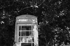 Telefonzelle innerhalb der grünen Baumaste lizenzfreie stockfotografie