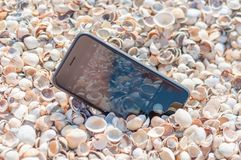 Telefoon in shells stock foto's